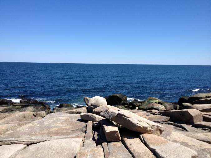 Halibut Point State Park4